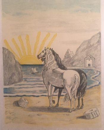 cavalli-med1